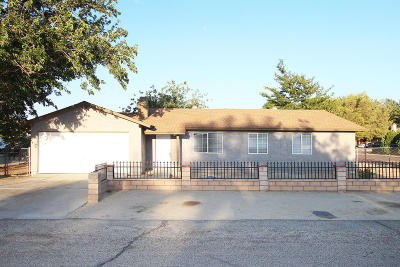 Palmdale Single Family Home For Sale: 40104 E 178th Street