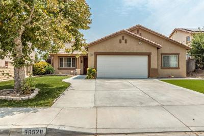 Palmdale Single Family Home For Sale: 36528 Rodeo Street