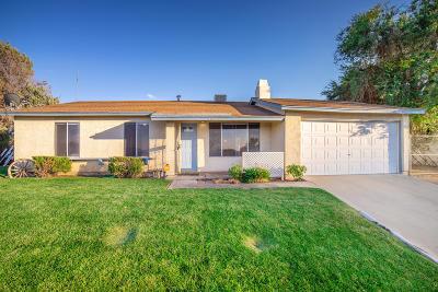 Lake Los Angeles Single Family Home For Sale: 40012 E 176th Street