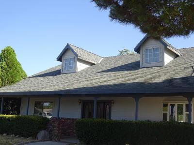 Quartz Hill Single Family Home For Sale: 4044 W Avenue L2 Avenue