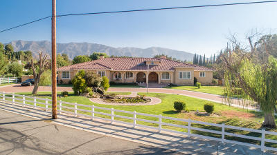 Acton, Canyon Country, Castaic, Saugus, Newhall, Santa Clarita, Stevenson Ranch, Valencia, Agua Dulce Single Family Home For Sale: 15770 Iron Canyon Road