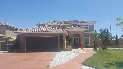 Palmdale Single Family Home For Sale: 6314 Sandwood Way Way