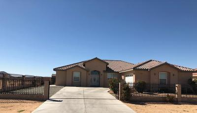 California City Single Family Home For Sale: 9612 S Loop Boulevard
