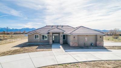 Littlerock Single Family Home For Sale: 10646 E Ave R10