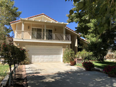 Acton, Canyon Country, Castaic, Saugus, Newhall, Santa Clarita, Stevenson Ranch, Valencia, Agua Dulce Single Family Home For Sale: 32035 W 41st Street