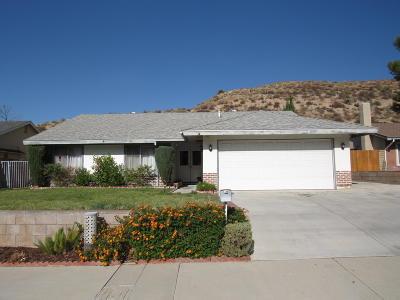 Santa Clarita Single Family Home For Sale: 29651 Abelia Road