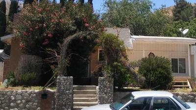 Acton, Canyon Country, Castaic, Saugus, Newhall, Santa Clarita, Stevenson Ranch, Valencia, Agua Dulce Single Family Home For Sale: 16967 Forrest Street