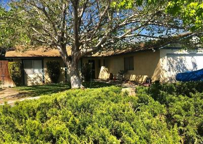 Palmdale Single Family Home For Sale: 37323 Sabal Avenue