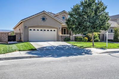 Palmdale, Lancaster, Quartz Hill, Rosamond, Pearblossom, Lake Los Angeles, Juniper Hills, Leona Valley, Lake Elizabeth, Antelope Acres, Lake Hughes, Green Valley, Llano, Littlerock Single Family Home For Sale: 5652 Vahan Court