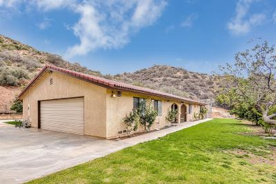 Acton, Canyon Country, Castaic, Saugus, Newhall, Santa Clarita, Stevenson Ranch, Valencia, Agua Dulce Single Family Home For Sale: 2904 Golden Spur Road