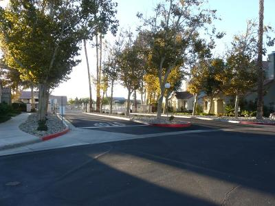 Palmdale Condo/Townhouse For Sale: 37940 E 42nd Street #Apt 118