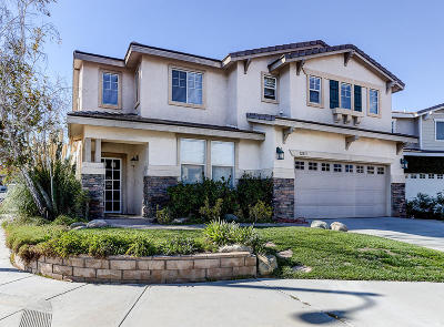 Castaic Single Family Home For Sale: 32251 Shadow Lake Lane