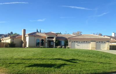 Palmdale Single Family Home For Sale: 6310 Giovanni Way