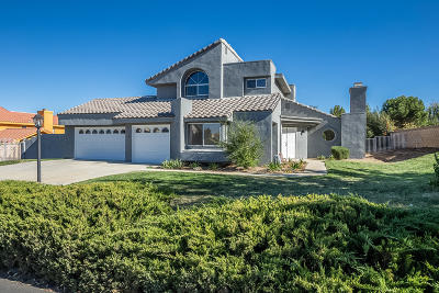 Palmdale Single Family Home For Sale: 41110 Ridgegate Lane