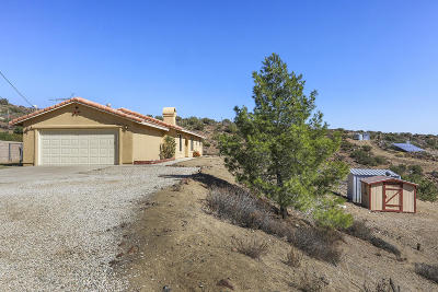 Acton, Canyon Country, Castaic, Saugus, Newhall, Santa Clarita, Stevenson Ranch, Valencia, Agua Dulce Single Family Home For Sale: 5525 W Avenue X