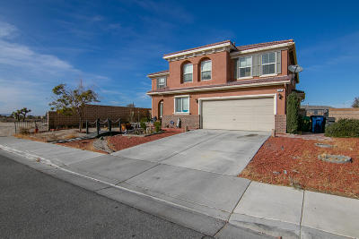 Palmdale Single Family Home For Sale: 6195 E Explorer Way