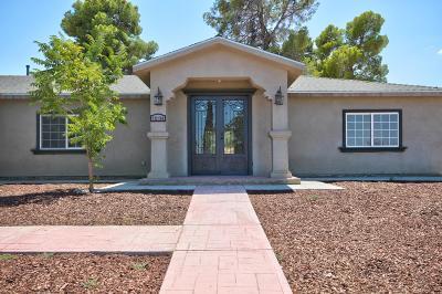 Pearblossom Single Family Home For Sale: 12136 E Ave V 12
