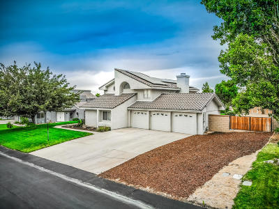 Palmdale Single Family Home For Sale: 41056 Ridgegate Lane