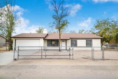Single Family Home For Sale: 40233 E 179th Street