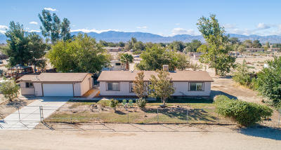 Palmdale, Lancaster, Quartz Hill, Rosamond, Pearblossom, Lake Los Angeles, Juniper Hills, Leona Valley, Lake Elizabeth, Antelope Acres, Lake Hughes, Green Valley, Llano, Littlerock Single Family Home For Sale: 9820 E Avenue Q12