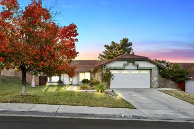 Palmdale Single Family Home For Sale: 40513 Pinnacle Way
