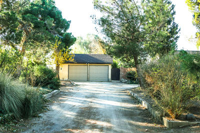 Lancaster Single Family Home For Sale: 8660 W Avenue E4