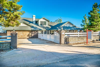 Palmdale Single Family Home For Sale: 41050 W 13th Street