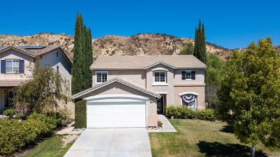 Castaic Single Family Home For Sale: 30610 Beryl Place