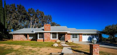 Palmdale Single Family Home For Sale: 819 W Denise Avenue
