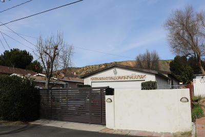 Castaic Single Family Home For Sale: 29539 Cromwell Avenue