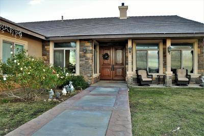 Palmdale Single Family Home For Sale: 3804 E Avenue T8