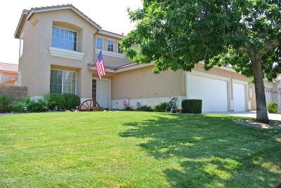 Palmdale Single Family Home For Sale: 40332 Vista Pelona Drive