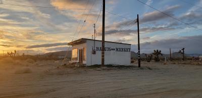 Mojave Single Family Home For Sale: 6350 Backus Road