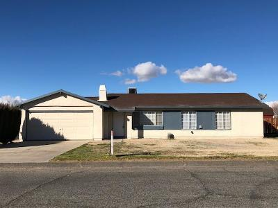 Palmdale Single Family Home For Sale: 17145 E Parkvalley Avenue
