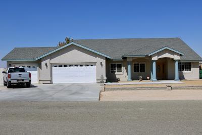 California City Single Family Home For Sale: 9669 Denhart Avenue