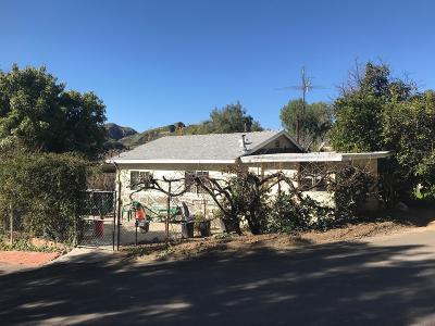 Castaic Single Family Home For Sale: 29141 Rainbow Drive
