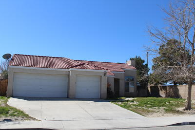 Palmdale Single Family Home For Sale: 6010 E Ave R11