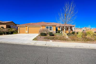 Palmdale Single Family Home For Sale: 41713 Port Avenue
