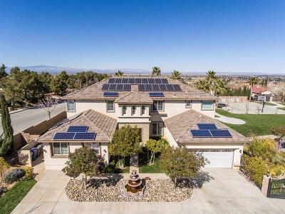 Lancaster, Palmdale, Quartz Hill Single Family Home For Sale: 5357 Skyburst Court