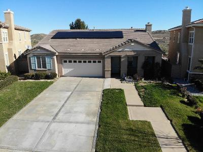 Palmdale Single Family Home For Sale: 2115 Tangerine Street