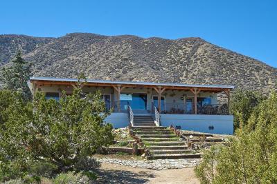 Littlerock Single Family Home For Sale: 11046 Juniper Hills Road