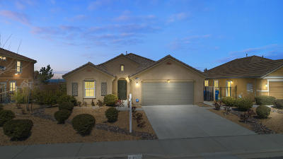 Palmdale Single Family Home For Sale: 1635 Panther Drive