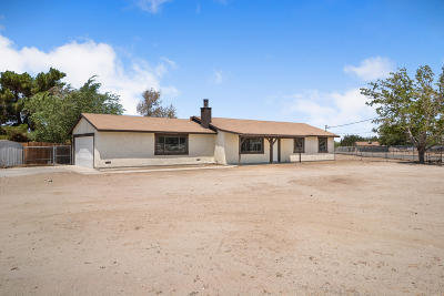Palmdale, Lancaster, Quartz Hill, Antelope Acres, Rosamond, Leona Valley, Lake Elizabeth, Lake Hughes, Juniper Hills, Littlerock, Llano, Pearblossom, Lake Los Angeles, Wrightwood Single Family Home For Sale: 10153 E Ave R 4