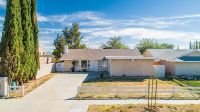 Palmdale Single Family Home For Sale: 38952 Mesquite Road