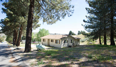 Leona Valley Single Family Home For Sale: 40100 W 97th Street
