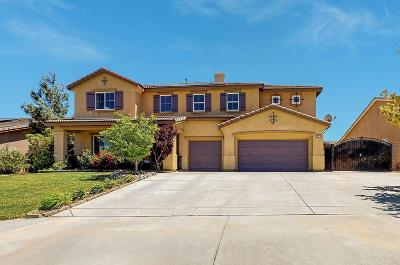 Lancaster Single Family Home For Sale: 42516 Valley Vista Drive