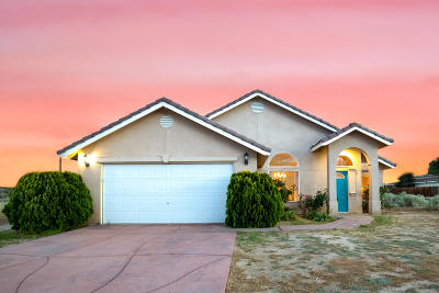 California City Single Family Home For Sale: 8412 Jimson Avenue