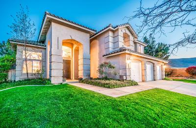 Lancaster Single Family Home For Sale: 7356 Sunnyslope Drive