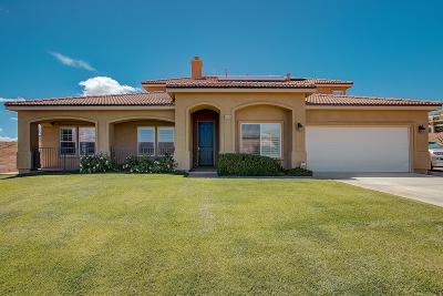 Acton Single Family Home For Sale: 34599 Desert Road
