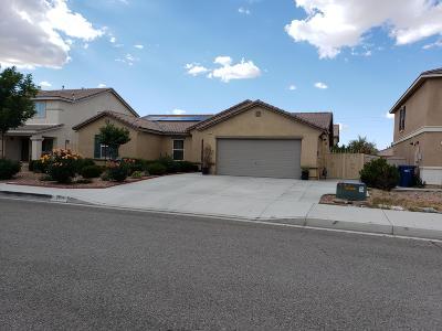 Lancaster Single Family Home For Sale: 3115 Topaz Lane
